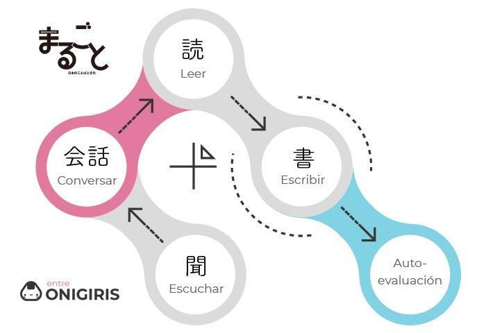 Estructura lecciones marugoto
